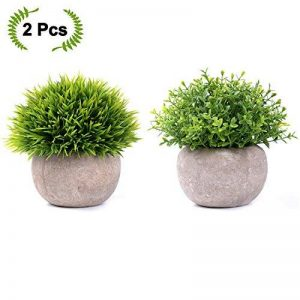 perlite plante TOP 7 image 0 produit