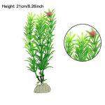 perlite plante TOP 8 image 3 produit