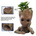 perlite plante TOP 9 image 1 produit