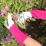 Premier pour femme à manches longues Gants de jardinage–Thorn Proof Cuir de chèvre et vache Gauntlet–Idéal pour toutes les tâches de jardin (d'élagage au désherbage)–Cadeau de jardin Idéal pour femme de la marque Flower Power User Friendly Tools image 2 produit