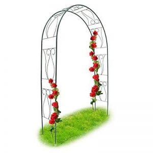 Relaxdays Arche à Rosiers tuteur roses arche de jardin arceau rosiers Support Plantes Grimpantes Vert 2,3 m de la marque Relaxdays image 0 produit