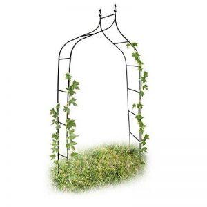 Relaxdays Arche de jardin décoration pour le jardin arche plantes grimpantes, métal, 2.4m de la marque Relaxdays image 0 produit