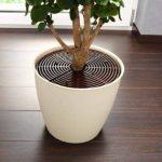 Rucco V322 Lot de 2 grilles de protection pour plantes de la marque Rucco image 1 produit