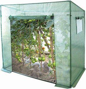 Serre à bâche renforcée/fenêtre de ventilation - pour les tomates/légumes de la marque Harbour Housewares image 0 produit