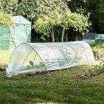 Serre chenille - pour faire pousser des légumes/fruits - transparent 5 m de la marque Harbour Housewares image 2 produit