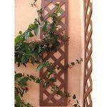 Set de 2 treillis en BOIS COMPOSITE 1x0,25 m. Couleur bois naturel. Marque: B Cottage de la marque Botanyland image 1 produit