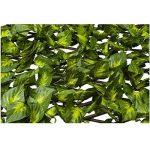 Sodipa Treillis Osier 1 x 2 m Feuilles Vertes-Jaunes de la marque Sodipa image 1 produit