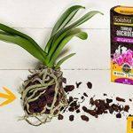 Solabiol TERORC6 Terreau Orchidées, Brun, 6 L de la marque Solabiol image 3 produit