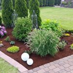 substrat de coco jardinage TOP 6 image 3 produit