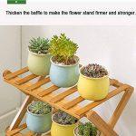 support en bambou pour plantes grimpantes TOP 6 image 4 produit