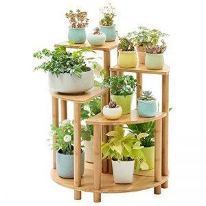 support en bambou pour plantes grimpantes TOP 7 image 0 produit