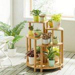support en bambou pour plantes grimpantes TOP 7 image 2 produit