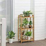 support en bambou pour plantes grimpantes TOP 8 image 2 produit