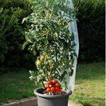 support plant de tomate TOP 1 image 1 produit