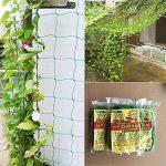 support plant de tomate TOP 4 image 1 produit