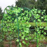 support plant de tomate TOP 4 image 3 produit