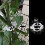 support plant de tomate TOP 8 image 1 produit