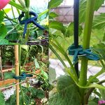 support plant de tomate TOP 9 image 3 produit