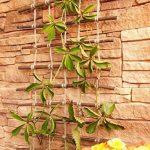 support pour rosiers grimpant TOP 10 image 2 produit