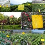 terreau pour fleurs TOP 14 image 1 produit