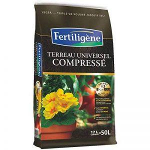 terreau universel fertiligene TOP 3 image 0 produit