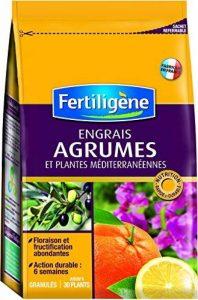 terreau universel fertiligene TOP 9 image 0 produit