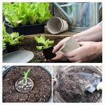 étiquette plantes au jardin TOP 11 image 3 produit
