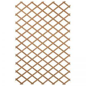 treillis extensible en bois naturel - fsc label, lattes 18 x 6 mm - 50 x 150 cm de la marque NATURE image 0 produit