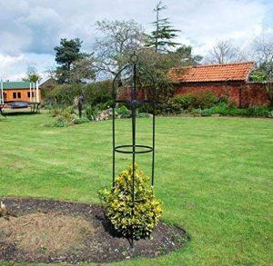 tuteur jardin TOP 2 image 0 produit