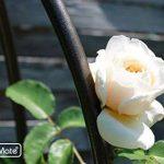 tuteur jardin TOP 6 image 4 produit