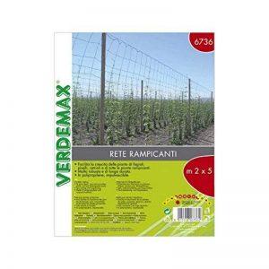 Verdemax 6736les plantes grimpantes Filet Rouleau 2x 5m de la marque Verdemax image 0 produit
