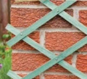 Vert Extensible rectangulaire Treillis–180cm x 60cm de la marque Tenax image 0 produit