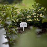 Windhager porte étiquette à planter de la marque Windhager image 2 produit